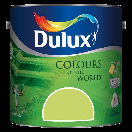Dulux A Nagyvilág színei Rejtőző Leguán 5,0l