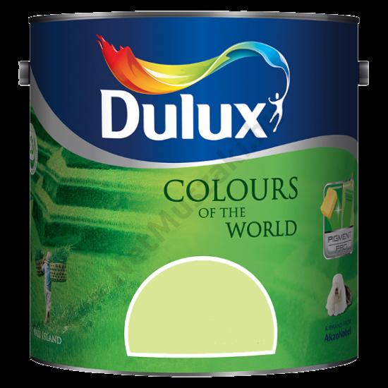 Dulux A Nagyvilág színei Bambusz Liget 2,5l